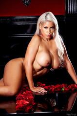 Busty Blonde Milf Bridgette B