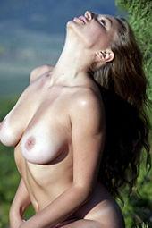 Aurelia In The Nature